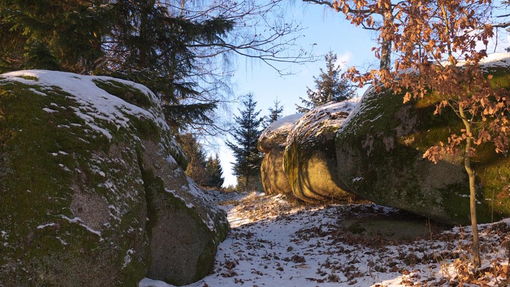 Geführte Winterwanderungen mit Martin Deutenhauser