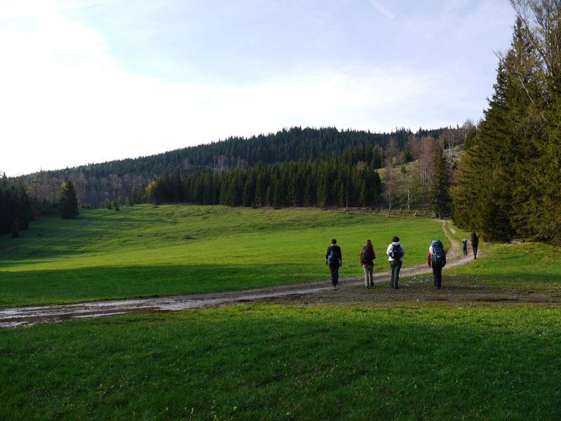 Unterberg-Kieneck-Gutensteiner-Alpen-08
