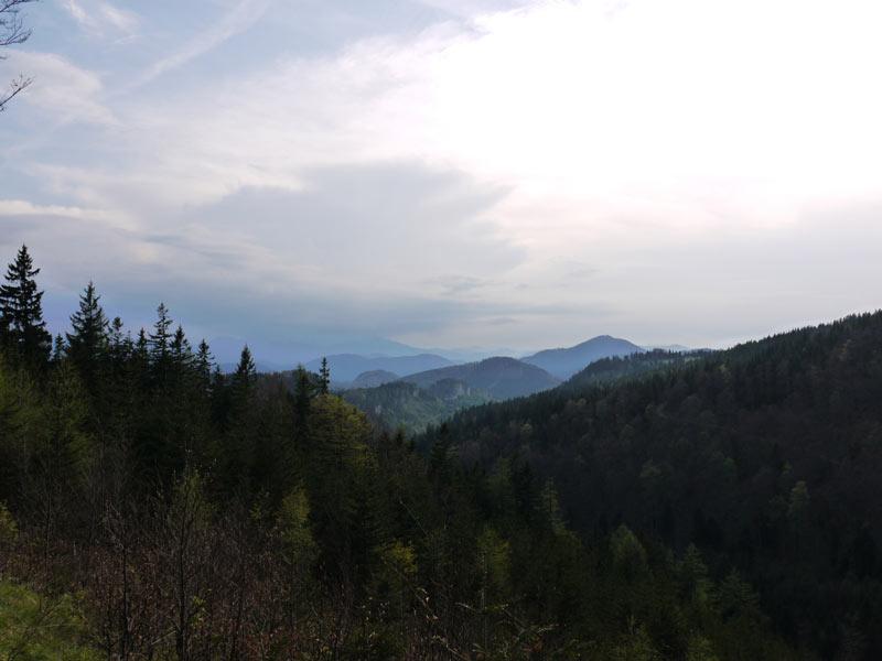 Unterberg-Kieneck-Gutensteiner-Alpen-10