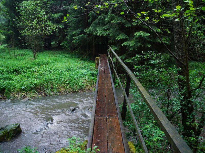 Wandern-Thayatal-Raabs-Kollmitzgraben-010