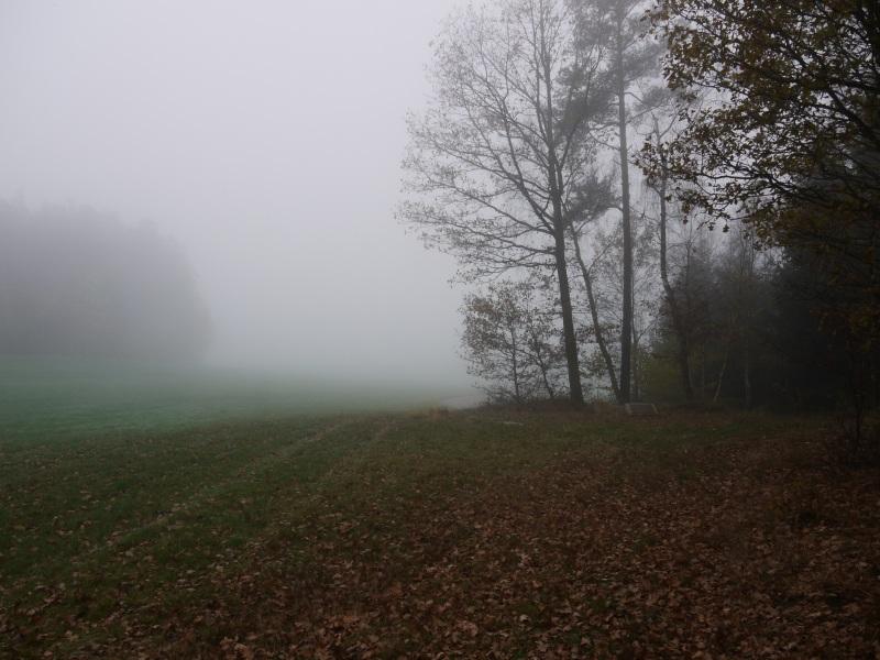 141102_steinwanderung_003