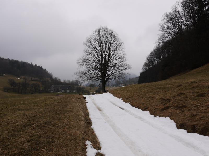 150314_hocheck araburg001