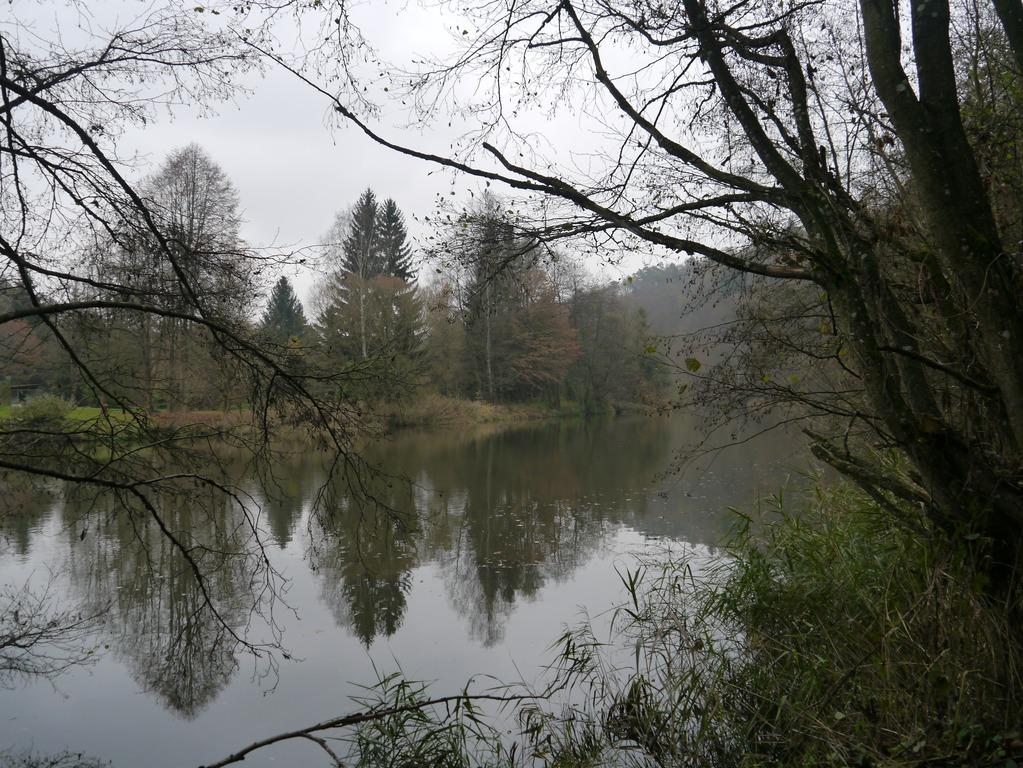 161112_drosendorf009