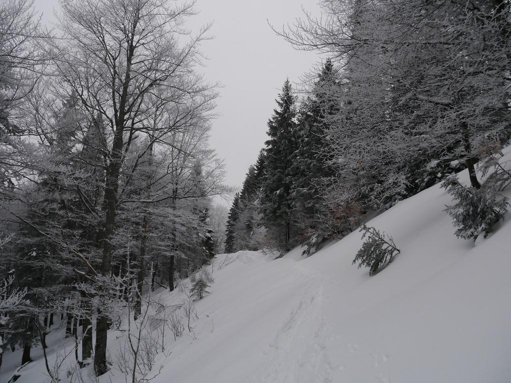 180210_schnalzstein001