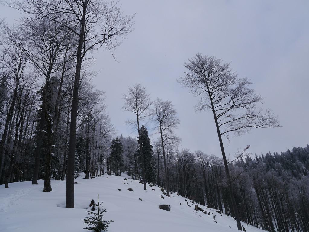 180211_göller001
